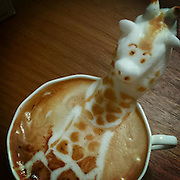 """VIDEO AVAILABLE - JAPAN OUT<br /> The first 3D latte art in the world<br /> <br /> 3D printer, 3D movie, and,,, next comes 3D Latte Art!!!<br /> 3D latte art is an art style where the artist uses whipped cream to decorate coffee cups with all sorts of shapes and designs. They say it was invented and spread throughout the world by Barista Kazuki Yamamoto. Yamamoto's work encompasses a wide range of designs, from animals to popular characters. The Cat and Rabbit that he made during our interview with him were so adorable that we hesitated to drink them. We went to the cafe that Yamamoto manages, called """"Reissue,"""" in Harajuku, to see what 3D Latte Art is like in person.<br /> ©Exclusivepix Media"""