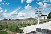 chateau cadet peychez saint emilion bordeaux france