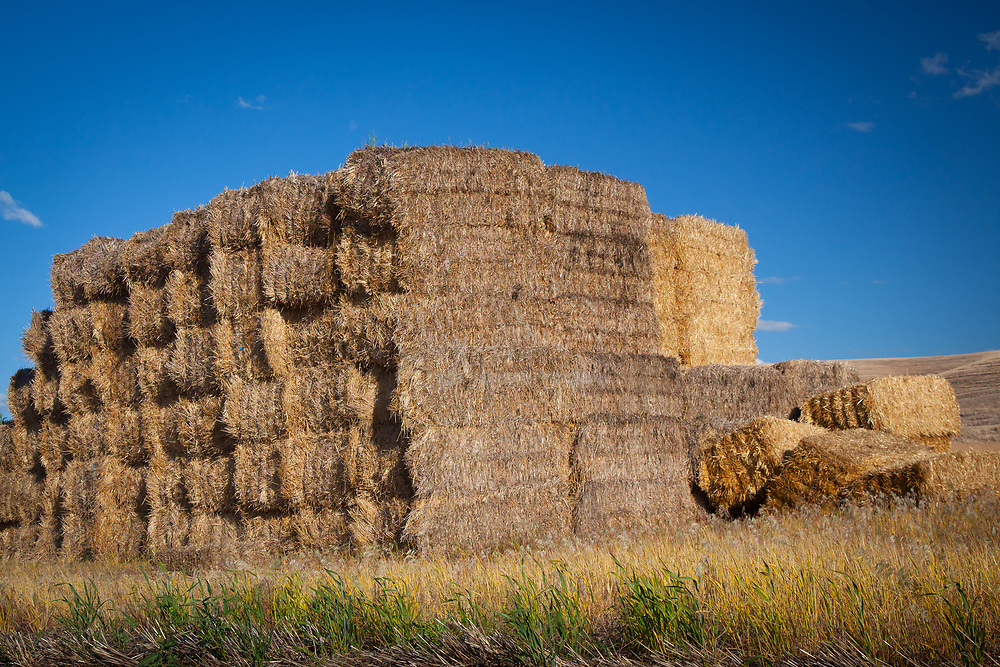 Hay bales near the town of Palouse in the agricultural area of The Palouse in eastern Washington state.