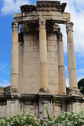 The Roman Forum, also known by its original Latin designation, is located between the Palatine Hill and the Capitoline Hill of the city of Rome, Italy.