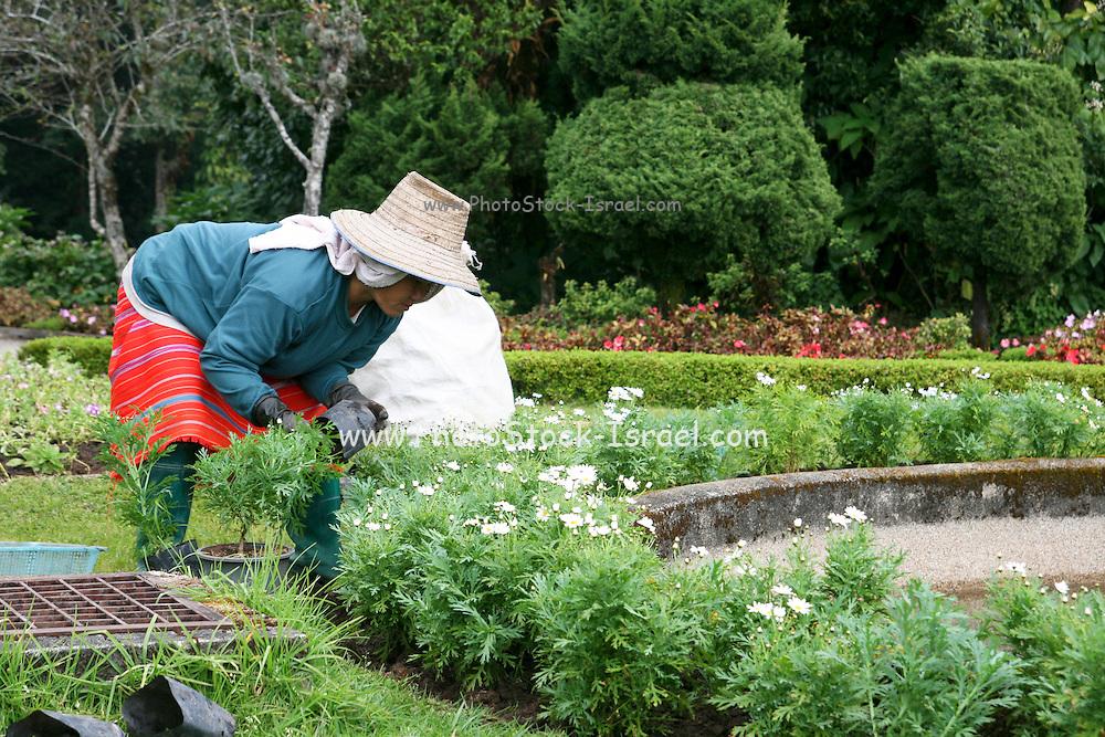Thailand Thai gardener works in a park