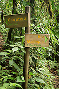 Trail signpost, Cloud Forest, Mashpi Reserve, Distrito Metropolitano de Quito, Ecuador, South America
