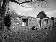 Clane Cottage.