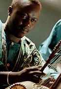 Kauding Cissoko - Kora player