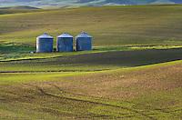 Grain silos, wheat fields in the Palouse region of the Inland Empire of Washington