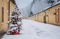 THEMENBILD - weihnachtlich dekorierte Tannenbäume rund um das Schloss Hellbrunn, aufgenommen am 06. Jänner 2021 in Salzburg, Oesterreich // Christmas decorated fir trees around Hellbrunn Palace, in Salzburg, Austria on 2021/01/06. EXPA Pictures © 2021, PhotoCredit: EXPA/Stefanie Oberhauser