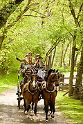 George Alexis (Frolic) Weymouth of Chadds Ford, PA, is an artist and Chairman of the Board of Trustees of the Brandywine Conservancy, an environmental and cultural organization that he helped found in 1967. Seen here driving his coach. (Photograph by Jim Graham)