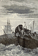 They have already depopulated Baffin's Bay, and are annihilating a class of useful animals From the Book Twenty thousand leagues under the seas, or, The marvelous and exciting adventures of Pierre Aronnax, Conseil his servant, and Ned Land, a Canadian harpooner by Verne, Jules, 1828-1905 Published in Boston by J.R. Osgood in 1875