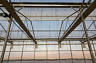 The Sahara Forest Project on the outskirts of Aqaba, on Jordan's southern Red Sea coastline. The farm uses desalinated sea water and greenhouses to sustainably farm crops in land that was once aris desert.