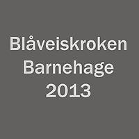 Blaaveiskroken_2013