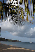 Anguilla, British West Indies -  Palm fronds hang in front of an early morning view of yachts anchored in Crocus Bay on the north coast of the island.