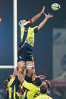 Marius Sirbe of Romania tries to catch the ball during the rugby test match between Romania and USA, on National Stadium Arc de Triomphe in Bucharest, November 8, 2014.  Romania lose the match against USA, final score 17-27.