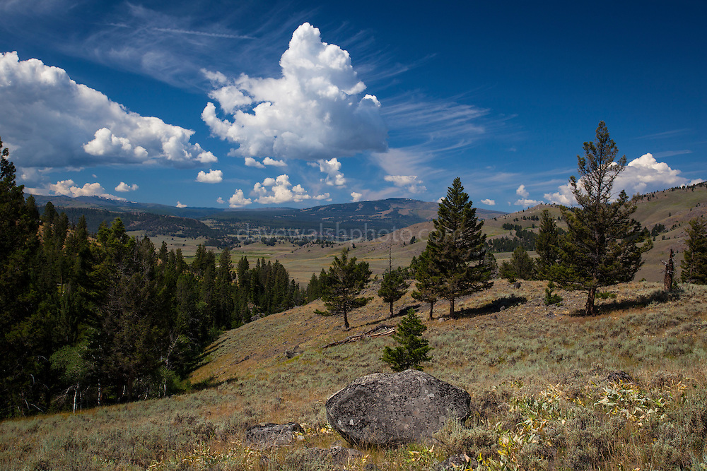 Slough Creek Trail, Yellowstone National Park, Wyoming.