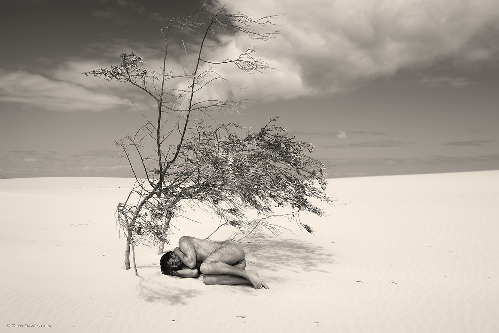 Sometimes the world is just too hot, and in the heat there is an urgent need for shade, for ease, for peace, for sanctuary. I find myself in need of more shade these days, but there is now less available than ever. We are destroying ourselves and I find myself fading.