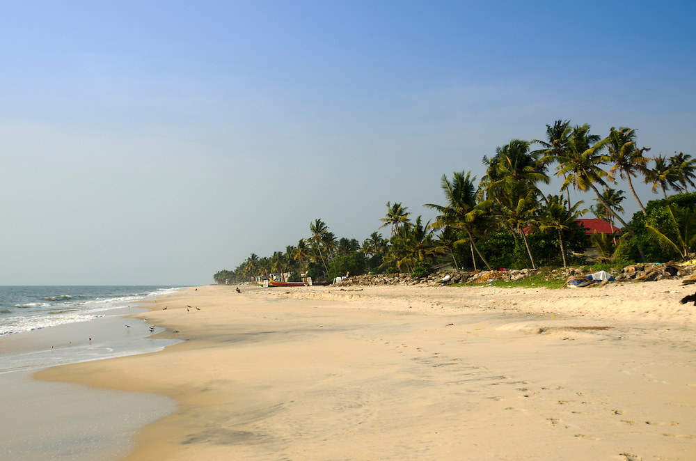 Palm-fringed beach in Alleppey, Kerala, Indian Subcontinent