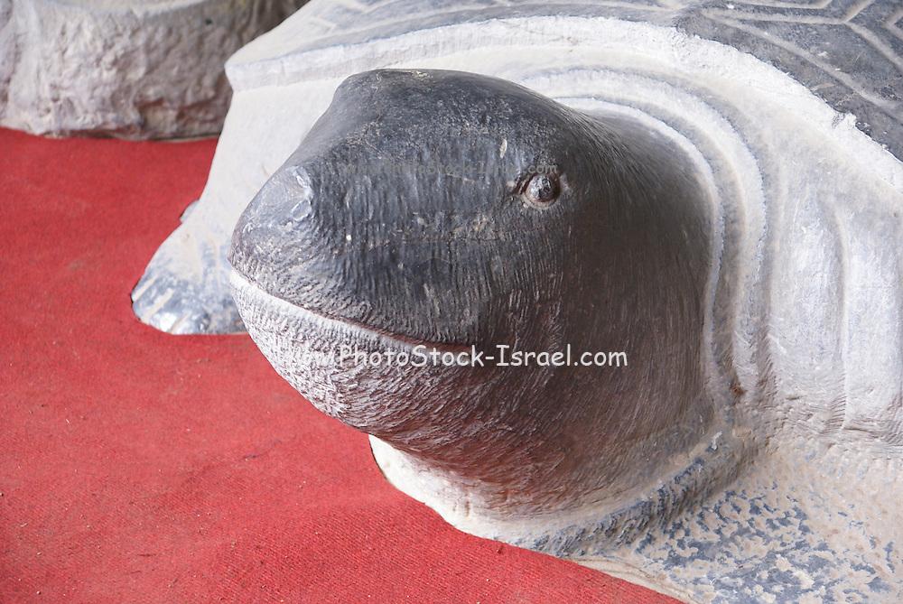 Head of a stone tortoise at the Temple of Literature, Hanoi, Vietnam,
