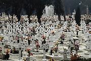San Michele cemetery, Venice, Italy.