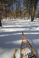 hiking through the New England woods with traditional snowshoes.
