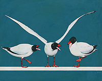 This charming depiction of nature by celebrated artist Jan Keteleer shows three beautiful Black Seagulls in the company of one another. You will appreciate the attention to detail. Certainly, you will also love the way this seemingly simple fine art piece can make one thing of summer, and of the opportunity to travel all the way out to the sea. -<br />