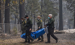 November 17, 2018 - Magalia, California, U.S. - Fresno and Butte County coroners team remove remains  of a body in Magalia's West Park Drive on Thursday, Nov. 15, 2018 after the Camp Fire burned many of the homes in the area. (Credit Image: © Hector Amezcua/Sacramento Bee via ZUMA Wire)
