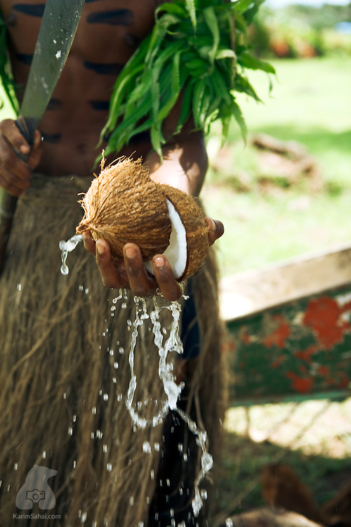 Villager cracking a coconut, Viti Levu, Fiji.<br /> <br /> The white flesh from the coconut will be used to flavor a meal cooked in a traditional ground oven heated by hot rocks. Coconut oil, or copra, is one Fiji's main exports.
