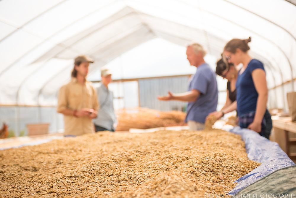 Frank Morton discusses seed saving at his Wild Garden Seed farm in Philomath, OR.