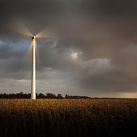 Windmills have always been a big part of the Norfolk landscape, and they certainly still are