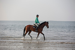Guerdat Steve, (SUI), Corbinian  relaxing at the beach<br /> Furusiyya FEI Nations Cup presented by Longines <br /> La Baule 2016<br /> © Hippo Foto - Dirk Caremans<br /> 14/05/16