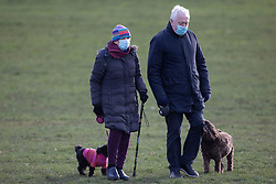 © Licensed to London News Pictures. 17/01/2021. London, UK. Members of the public wear face masks as they walk their dogs in Greenwich Park, South East London. A national lockdown is in place in England to attempt to reduce the spread of a new strain of COVID-19 . Photo credit: George Cracknell Wright/LNP