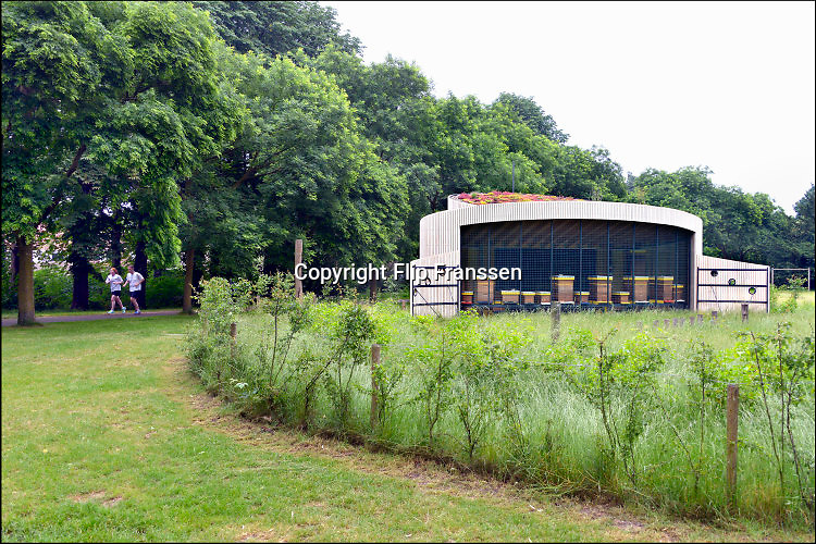 Nederland, Nijmegen, 12-6-2016Bijenkasten staan in een nieuw onderkomen in het Goffertpark. In elke kast zit in de zomer een bijenvolk met bijen die  honing produceren .Foto: Flip Franssen.