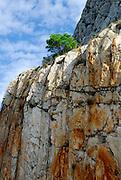 Cliff face covered in wire mesh, to prevent rock falls. Biokovo National Park, near Makarska, Croatia
