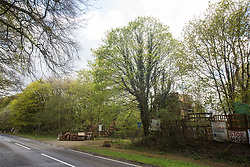 Wendover, UK. 4th May, 2021. A view of trees alongside the A413. Large areas of land are currently being cleared of trees and vegetation around Wendover in the Chilterns AONB in preparation for the HS2 high-speed rail link, with some work recently taking place after dark. Activists opposed to HS2 occupy Wendover Active Resistance Camp (part of which also pictured) beside the A413.