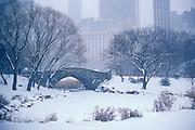The Pond, Central Park with Plaza Hotel, NY, NY