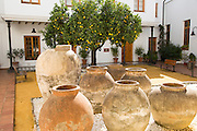 Courtyard in archaeology museum, Jerez de la Frontera, Cadiz Province, Spain