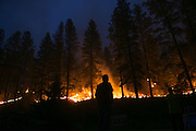 A resident of Conconully watches fire come down the ridge behind his house on Friday August 21, 2015.  <br /> <br /> Bettina Hansen / The Seattle Times