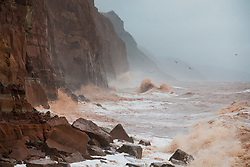 © Licensed to London News Pictures. 27/01/2016. Sidmouth, UK.  The sea turns the colour of the red sand at Sidmouth cliffs as the tail end of storm Jonas hits the UK. Photo credit: Peter Macdiarmid/LNP