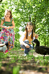 Two girls feeding pretzel to ducks in park, Munich, Bavaria, Germany