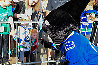 KELOWNA, BC - SEPTEMBER 29: Vancouver Canucks' mascot Fin tries to befriend a young fan at Prospera Place on September 29, 2018 in Kelowna, Canada. (Photo by Marissa Baecker/NHLI via Getty Images)  *** Local Caption *** fin