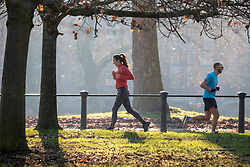 © Licensed to London News Pictures. 30/12/2019. London, UK. Runners enjoy an unseasonably mild sunny day in Hyde Park, London as forecasters predict warm weather and possibly the the warmest New Year's Eve for over a 170 years. Photo credit: Alex Lentati/LNP