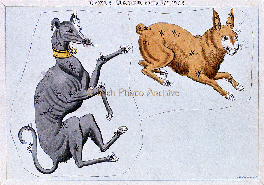 Constellations of Canis Major and Lupus. From 'Urania's Mirror', London c1820. Hand-coloured engraving .