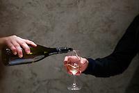 wine tasting party-MIT Alum, Paris