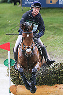 Credo III ridden by Richard Skelt in the Equi-Trek CCI-L4* Cross Country during the Bramham International Horse Trials 2019 at Bramham Park, Bramham, United Kingdom on 8 June 2019.