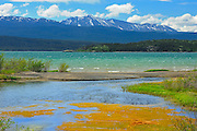 Marsh Lake, a widening of the Yukon River on the Alaska Highway<br /> near Whitehorse<br /> Yukon<br /> Canada
