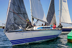 , Maibock Regatta 11. - 12.05.2019, ORC - NOODLES - GER 412 - X-99 - Ulrich MARTENS - Sail-Lollipop Regatta Verein  e.V