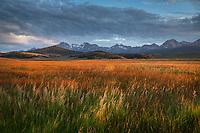 Stanley Basin meadows. Sawtooth Mountains Idaho