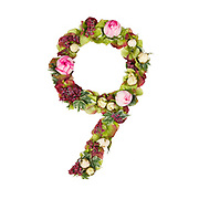 The number Nine Part of a set of letters, Numbers and symbols of the Alphabet made with flowers, branches and leaves on white background
