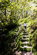 Woman walking up the steps of a cliff path on the North Coast of Jersey, CI surrounded by trees and the feel of the countryside