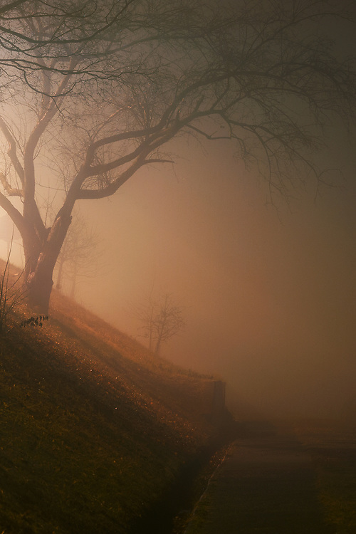 Fog along pathway alongside river below Kanawha Boulevard in Charleston, West Virginia.