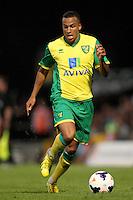 Martin Olsson, Norwich City