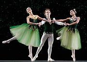 GASTON DE CARDENAS/EL NUEVO HERALD -- MIAMI -- Jeanette Delgado, Didier Bramaz, and Patricia Delgado dancers from the Miami City Ballet during a rehearsal of Emeralds part of the Ballet Jewels.